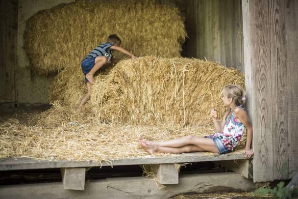 Geschmack der Kindheit - Naturgut Lassen Spass im Heu