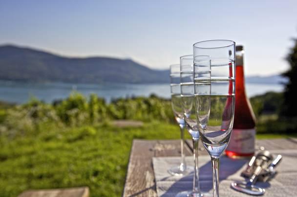 Wein in Kärnten