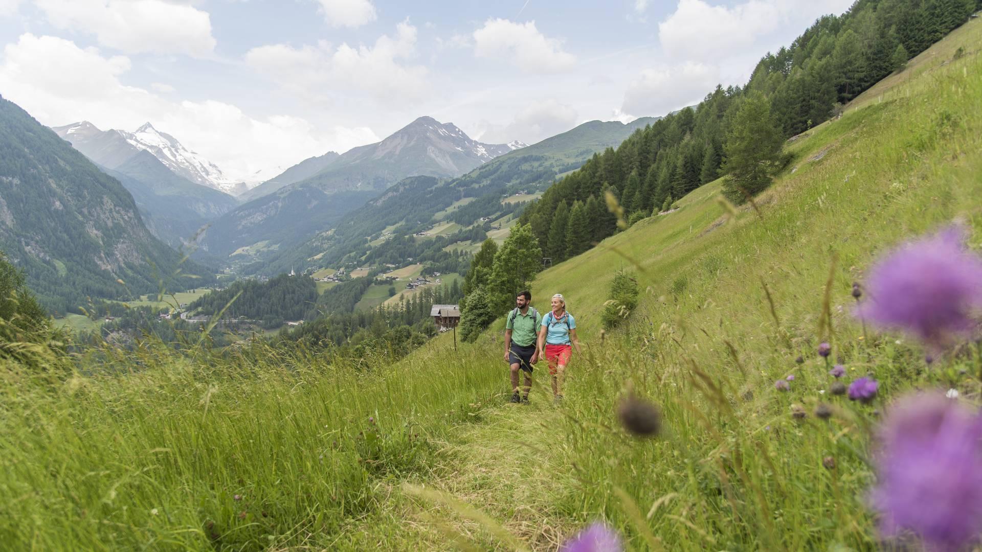 <p>Alpe Adria Trail, bei Schachern mit Blick auf den Glockner, bei Heiligenblut</p>