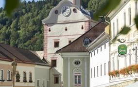 Stadt Gmünd