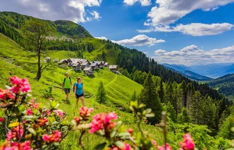 Alpské zážitky na pastvinách
