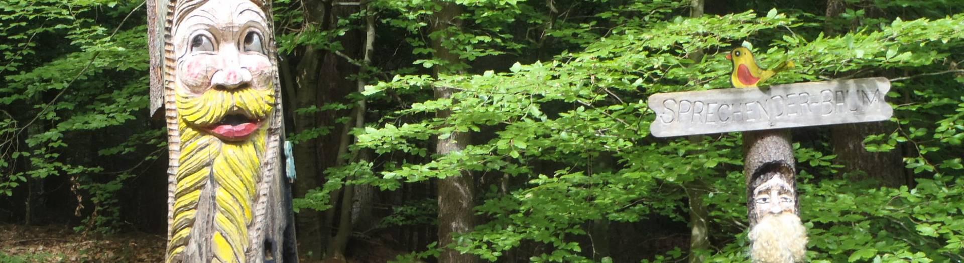 Zauberwald Rauschelesee